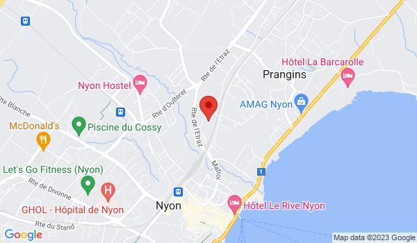 Google map positionnant le bien Magnifique appartement de 2 pièces dans une propriété à Nyon
