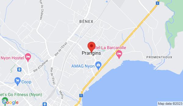 Google map positionnant le bien Magnifique 4,5 pièces à Prangins