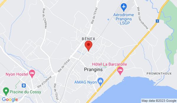 Google map positionnant le bien Superbe 3,5  duplex en rez-de-jardin et balcon à Prangins