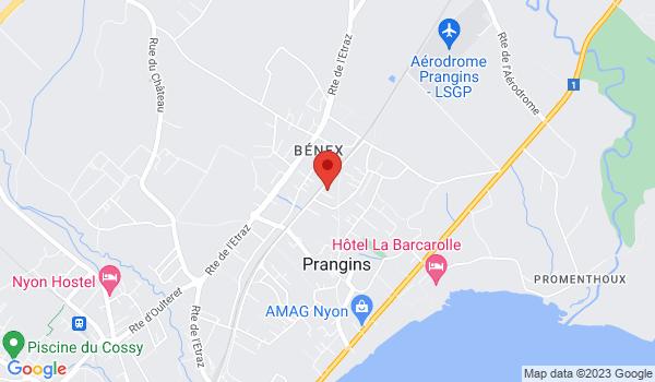 Google map positionnant le bien Place de parc extérieure à Prangins
