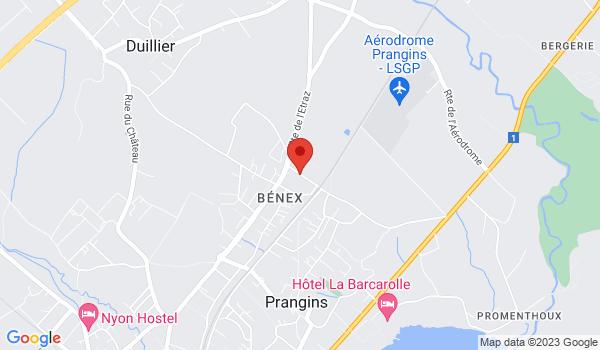 Google map positionnant le bien Bel appartement avec cachet de 3 pièces à Prangins