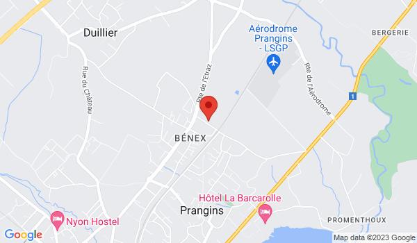 Google map positionnant le bien Magnifique triplex de 4 pièces à Prangins