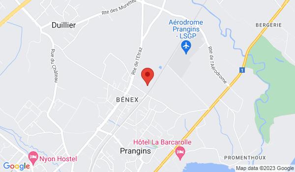 Google map positionnant le bien Grand local à louer à Prangins