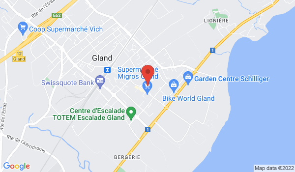 Google map positionnant le bien Appartement 4 pièces avec balcon à Gland