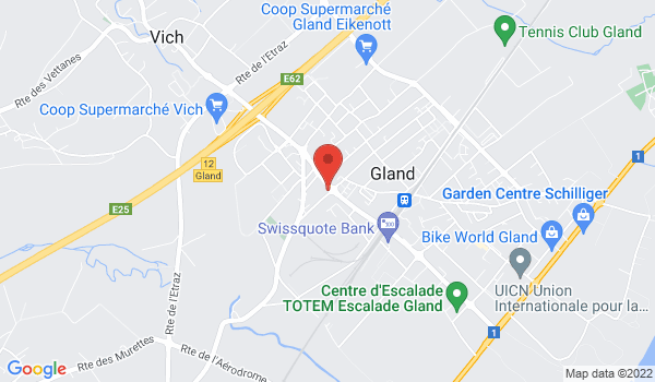 Google map positionnant le bien Superbe 2 pièces d'env. 60m2 à Gland
