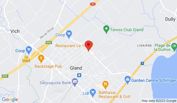 Google map positionnant le bien Charmant 2 pièces à Gland