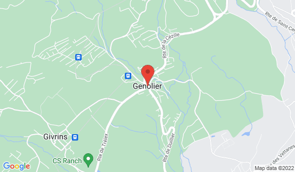 Google map positionnant le bien Magnifique appartement de 3,5 pièces à Genolier