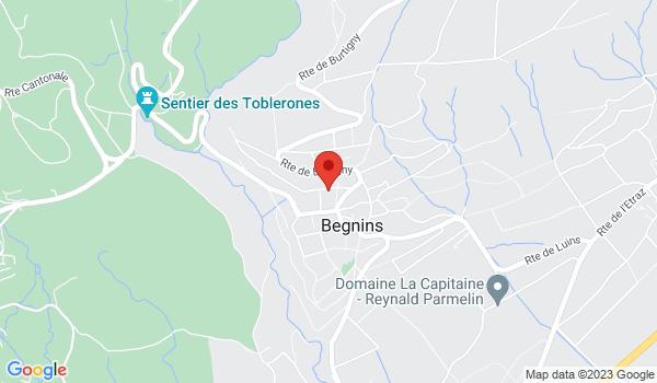 Google map positionnant le bien Bel appartement 5 pièces avec balcon à 10 min. de Nyon