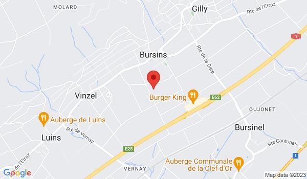 Google map positionnant le bien Maison - Château du Rosey