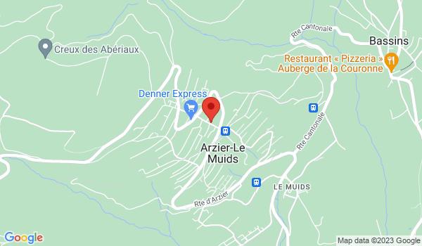 Google map positionnant le bien Joli studio à Arzier