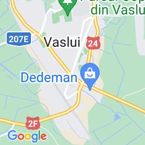 DELCIU TEODOR PERSOANĂ FIZICĂ AUTORIZATĂ