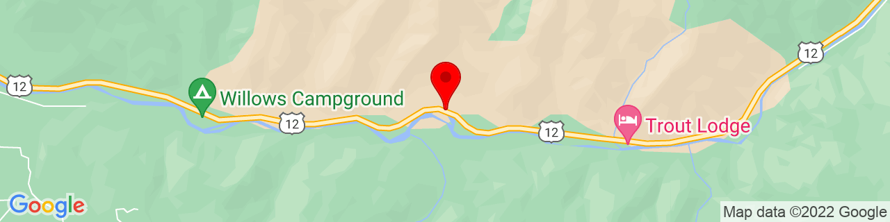 Google Map of 46.6730301, -121.0091737