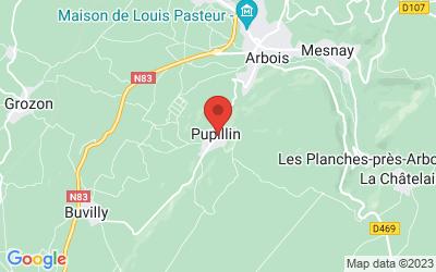 Rue du Ploussard 39600 PUPILLIN