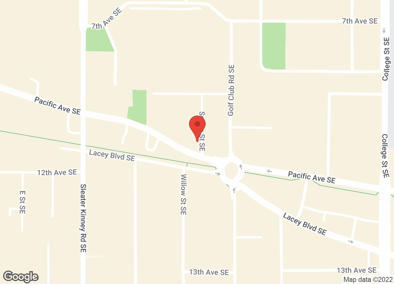 Google Map of VCA Lacey Animal Hospital