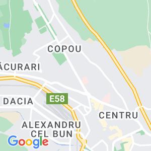 PFA Popescu Liviu Ionut