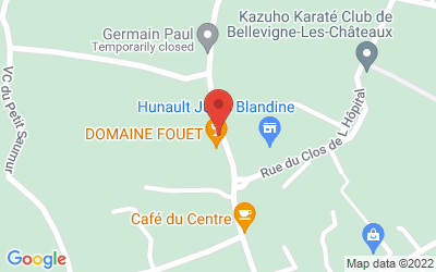 11 Rue de la Judée, 49400 Saint-Cyr-en-Bourg, France