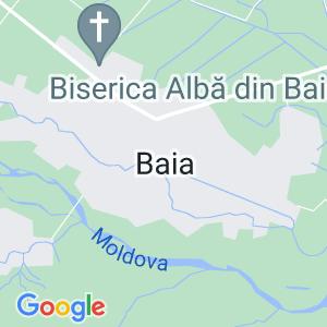 SCOALA GIMNAZIALA N. STOLERU BAIA