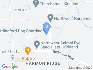 Map of Arlingford Dog Boarding Dog Boarding options in Kirkland | Boarding