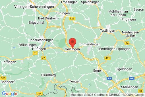Karte Geisingen