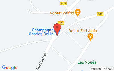 27 Rue des Pressoirs, 10360 Fontette, France