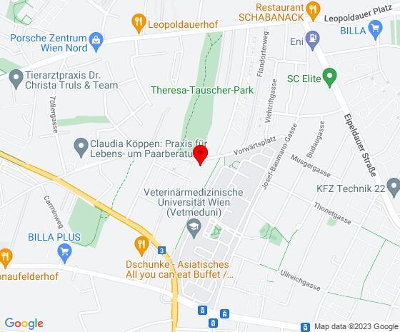 Google Map of Satzingerweg 64 / 2 / 217, 1210 Wien