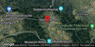 Google Map of Steinenbronn
