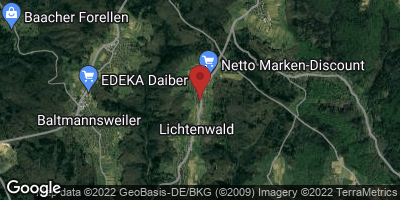 Google Map of Lichtenwald