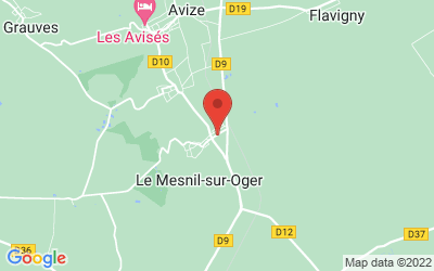 13 Avenue de la République, 51190 Le Mesnil-sur-Oger, France