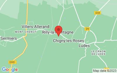 6 Rue des Rozais, 51500 Rilly-la-Montagne, France