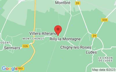 6 Rue Marcel Chansou, 51500 Rilly-la-Montagne, France