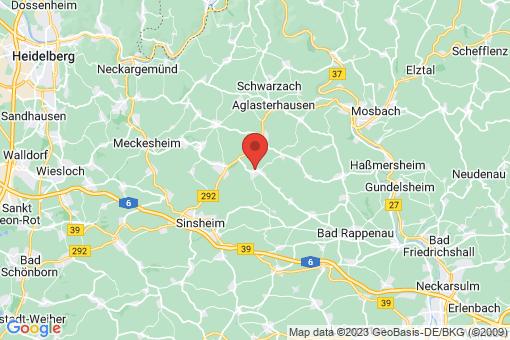 Karte Neckarbischofsheim