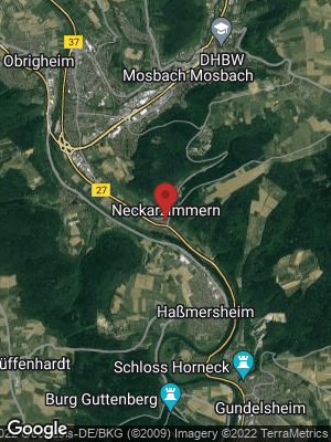 Google Map of Neckarzimmern