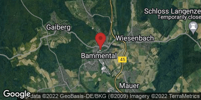 Google Map of Bammental