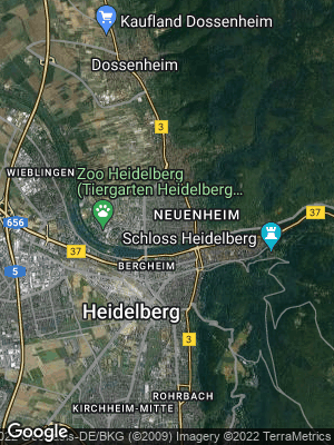 Google Map of Neuenheim