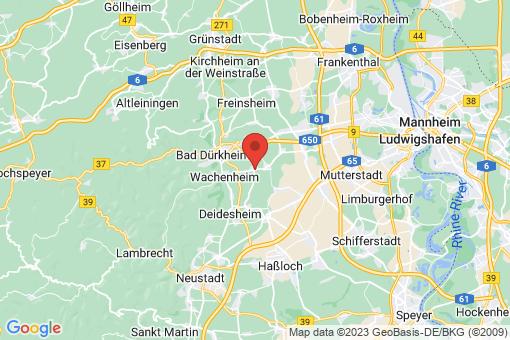 Karte Friedelsheim