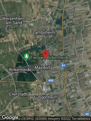 Google Map of Maxdorf