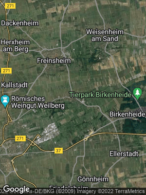 Google Map of Erpolzheim