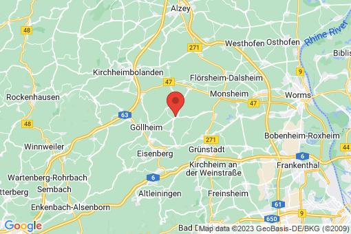 Karte Biedesheim