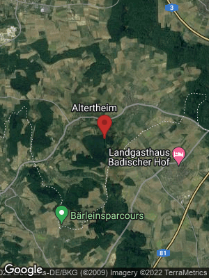 Google Map of Altertheim