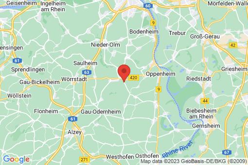 Karte Friesenheim