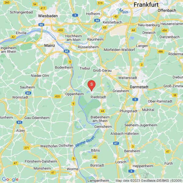 Riedsee Leeheim