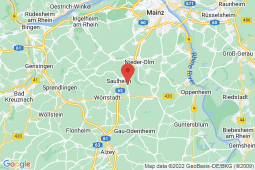 Karte Udenheim