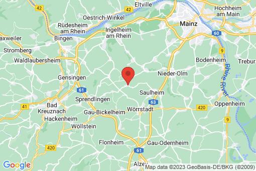 Karte Partenheim