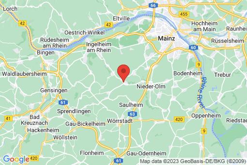 Karte Stadecken-Elsheim