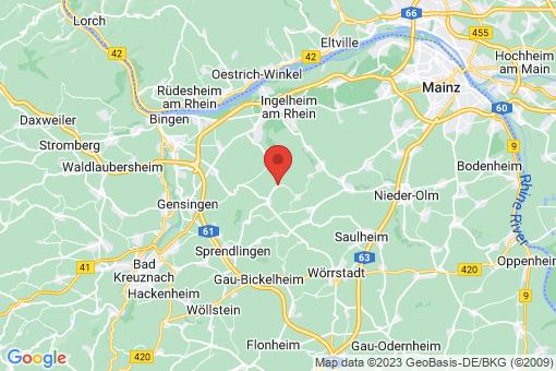 Karte Nieder-Hilbersheim