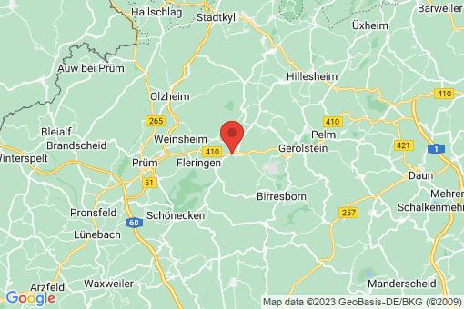Karte Büdesheim
