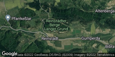 Google Map of Reinstädt