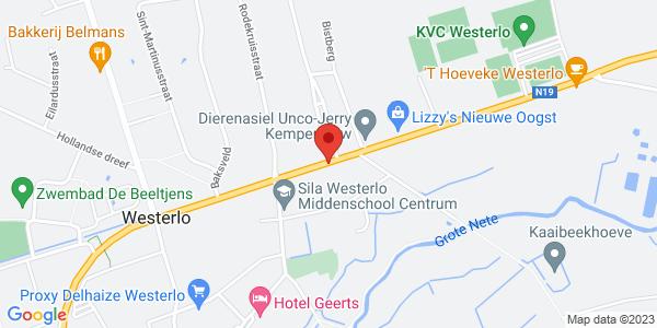 westerlo - zammel