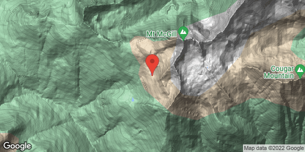 mcgill gunbarrels