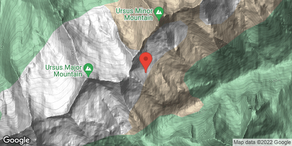 Ursus Minor Glades